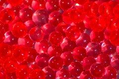 Bolas vermelhas transparentes do hydrogel Bolas do gel da água vermelha com bokeh Gel de silicone do gel do pol?mero Bola de cris imagens de stock
