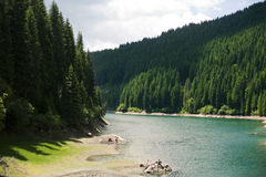 Bolboci lake. View of Bolboci  lake, in a summer day in Romania Royalty Free Stock Photo