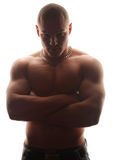 Bold male model. Young muscle bold male model in studio stock photo