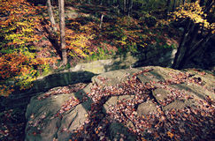 Bolder and Fall Foliage Stock Images