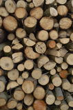 Boleslawiec, Poland - May: Firewood. A lot of firewood pieces Stock Photography