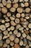 Boleslawiec, Pologne - pouvez : Bois de chauffage Photographie stock