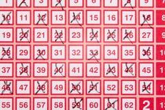 Boleto de lotería de la loteria del bingo con números cruzados Imágenes de archivo libres de regalías