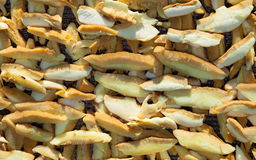 Boletus μανιτάρια που τεμαχίζονται και που συσσωρεύονται για την ξήρανση Στοκ Εικόνα