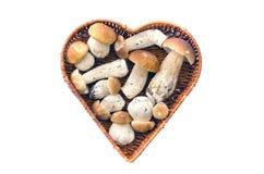 Boletus de cèpe de champignon dans le panier en osier Images stock