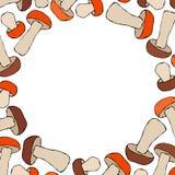 Boletus de forme de cercle ou Porcini, Aspen Mushroom Background Automne ou collection végétale de récolte d'automne Haute tirée  illustration stock