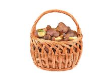 Boletus edulis mushroom in basket Stock Photography