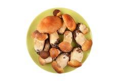 Boletus edulis mushroom in clay plate Stock Image