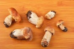 Boletus edulis mushroom on wooden board Royalty Free Stock Image