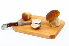 Boletus edulis mushrooms on cutting board - isolat Stock Photography