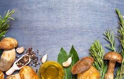 Boletus fresco dei funghi con il condimento ed i rosmarini Fotografie Stock Libere da Diritti