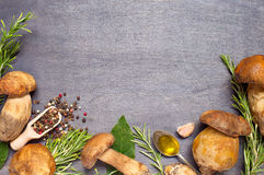 Boletus fresco dei funghi con il condimento, l'olio d'oliva ed i rosmarini Fotografie Stock Libere da Diritti
