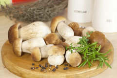 Boletus on the kitchen close view Royalty Free Stock Images