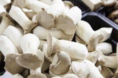 Boletus mushrooms in a market Royalty Free Stock Photography