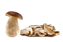 Boletus mushrooms raw and dried Stock Images