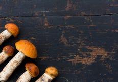 Boletus sauvage comestible frais d'orange-chapeau de champignons et x28 ; Aurantiacum& x29 de Leccinum ; Sur le vieux fond en boi photographie stock libre de droits