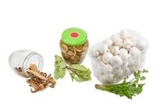 Boletus secco, funghi di bottone crudi e marinati freschi Fotografia Stock Libera da Diritti