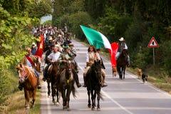 BOLGHERI,托斯卡纳:2008年9月27日-在森林之间的一匹马 库存图片