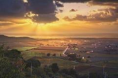 Bolgheri and Castagneto vineyard aerial panorama on sunset. Mare Stock Image