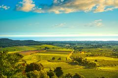 Bolgheri and Castagneto vineyard aerial view on sunset. Maremma Stock Images