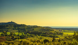 Bolgheri and Castagneto vineyard aerial view on sunset. Maremma Royalty Free Stock Photography