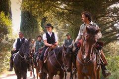 BOLGHERI TUSCANY: SEPTEMBER 27, 2008 - en häst mellan skogar Arkivbild
