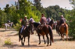 BOLGHERI TUSCANY: SEPTEMBER 27, 2008 - en häst mellan skogar Royaltyfria Bilder