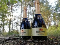 Bolgrad szampan obrazy royalty free