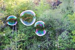 Bolha de sabão com a reflexão no fundo verde Foto de Stock Royalty Free