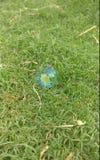 Bolha só na grama verde imagens de stock