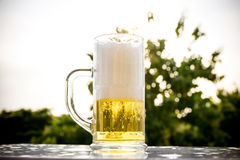 Bolhas brancas douradas da cerveja Foto de Stock Royalty Free