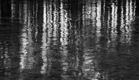 Bolhas congeladas na água pouco profunda Imagens de Stock