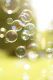 Bolhas de flutuação do verão Imagens de Stock