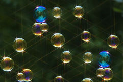 Bolhas de sabão Fotografia de Stock Royalty Free