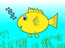 Bolhas do peixe dourado Foto de Stock Royalty Free