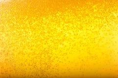 Bolhas na cerveja. Foto de Stock