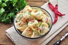 Bolinhas de massa e salsa - pelmeni do russo - ravioli italiano - na placa branca foto de stock royalty free