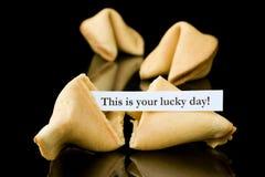 Bolinho de fortuna: Este é seu dia afortunado! imagem de stock