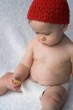 Bolinho do bebê Fotos de Stock