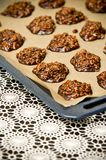 Bolinhos caseiros do chocolate Imagens de Stock Royalty Free