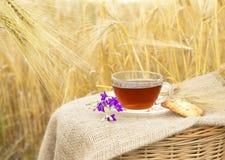 Bolinhos caseiros e copo do chá Foto de Stock