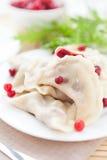 Bolinhos de massa cozinhados da airela no prato branco Fotografia de Stock Royalty Free