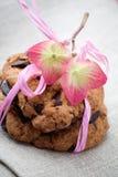 Bolinhos de microplaqueta de chocolate Imagens de Stock Royalty Free
