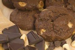 Bolinhos de microplaqueta de chocolate triplos Fotos de Stock