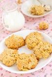 Bolinhos de Oatmeal Fotos de Stock Royalty Free