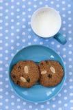 Bolinhos de Oatmeal com o copo do leite Imagens de Stock Royalty Free