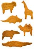 Bolinhos do pão-de-espécie Imagem de Stock Royalty Free