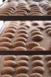 Bolinhos na padaria foto de stock royalty free