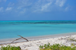 Bolivar Cay Royalty Free Stock Photography