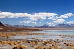 Bolivia desert landscape, Eduardo Avaroa National Reserve of Andean Fauna. South America - Bolivia. The surreal landscape is nearly treeless, punctuated by Stock Images